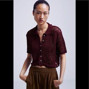Zara Crochet Knit Polo